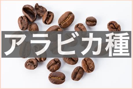 397dcf32ab403958850d8bef0f2f83b4 - ロブスタ種のコーヒー豆の味わいの正直な感想|アラビカ種との違いは?