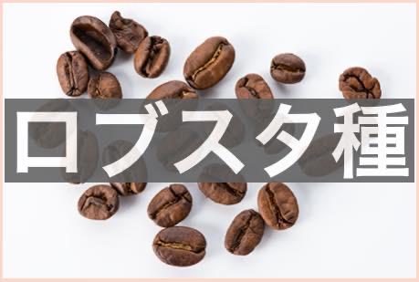 991e623b402a15906067c12f09574477 - ロブスタ種のコーヒー豆の味わいの正直な感想|アラビカ種との違いは?