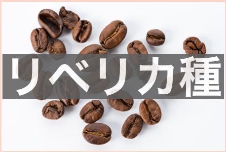 d78dc3218059db9d5086593c800d2154 - ロブスタ種のコーヒー豆の味わいの正直な感想|アラビカ種との違いは?