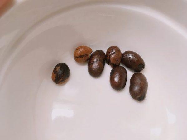 IMG 5618 600x450 - 土居珈琲のコーヒー豆15種類を飲んだ正直な感想|評判や口コミを探している方へ