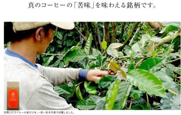 th doi coffee bali arabica sinzan 600x381 - 土居珈琲のコーヒー豆「バリアラビカ神山」を飲んだ感想を正直に述べる