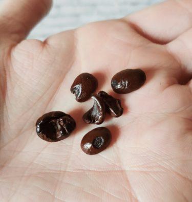コーヒー豆の状態