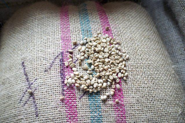 グアテマラ産コーヒー豆の生産状況