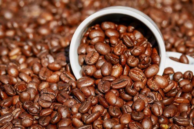 ニカラグア産コーヒー豆の等級・グレード