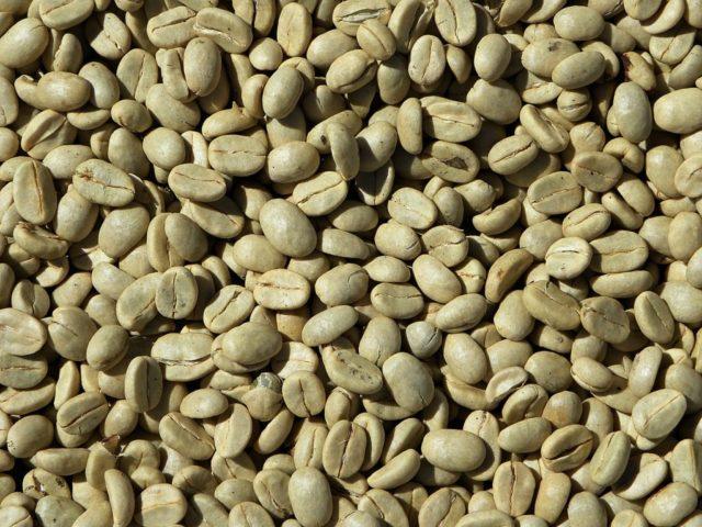 コーヒー種類