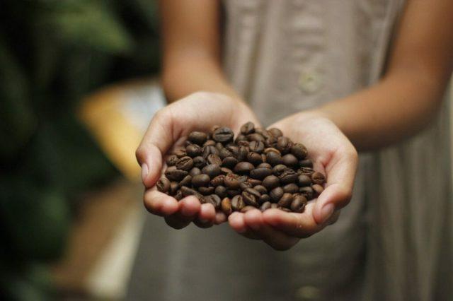 インドネシア産コーヒーの特徴
