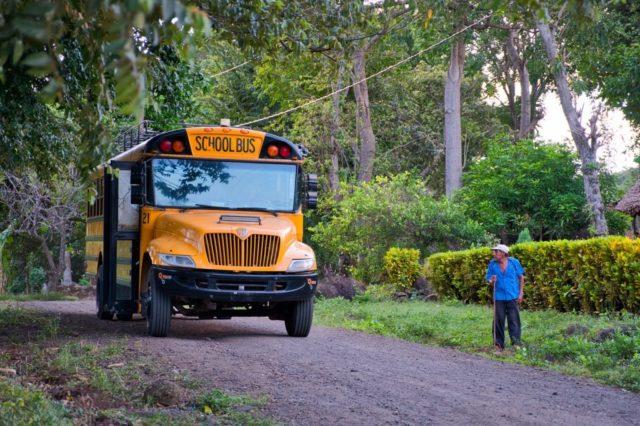 ニカラグア産コーヒー豆の栽培環境