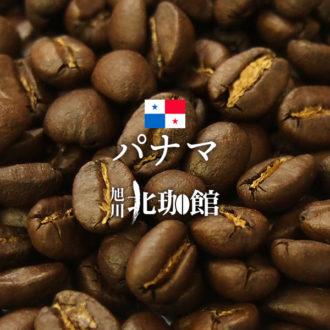 パナマのおすすめコーヒー豆3選