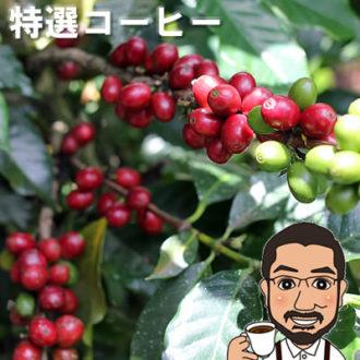ボリビア産コーヒー豆の特徴