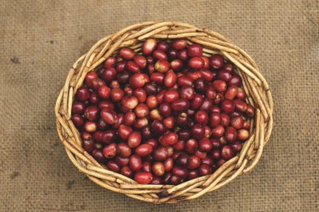 中煎りコーヒーの特徴と4つの魅力