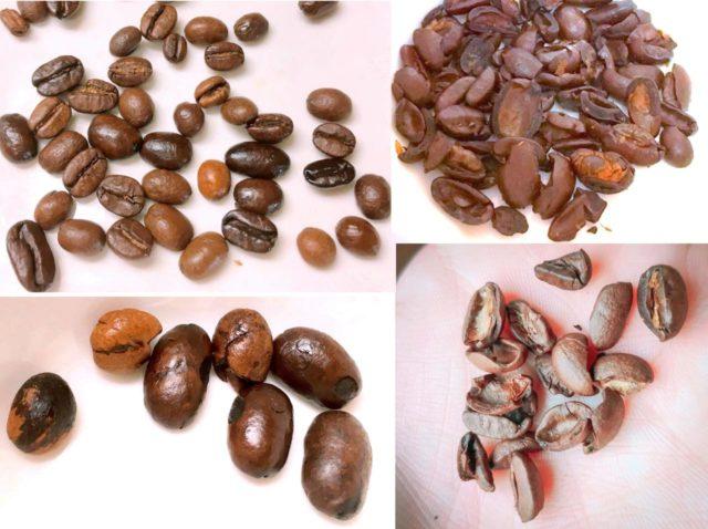 焙煎後の欠点豆