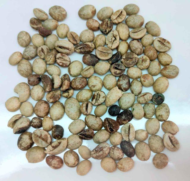 コーヒーの欠点豆(生豆)