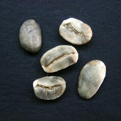 まだら・斑点のある豆